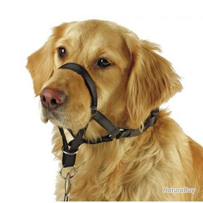 Licol chien de 45 cm à 54 cm