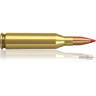 1 BOITE DE MUNITIONS NORMA 243 WIN V-MAX 75gr