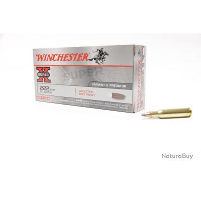 20 Munitions Winchester  Calibre 222 rem