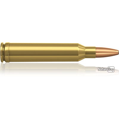 1 BOITES DE MUNITIONS NORMA   7 MM REMINGTON MAGNUM  ORYX