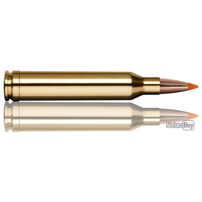 1  BOITES DE MUNITIONS NORMA   7 MM REMINGTON MAGNUM  TIPSRIKE 160GR