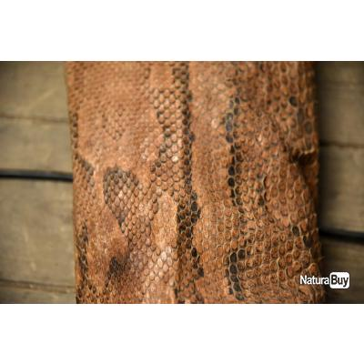 Peau de serpent (python) 5m de long, très bon état