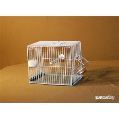 cage transport exposition oiseaux (M020)