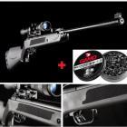 2 Packs Carabine à plombs Kandar 17 Joules LB 600 calibre 5.5 +Lunette + 500 Plombs Gamo Magnum