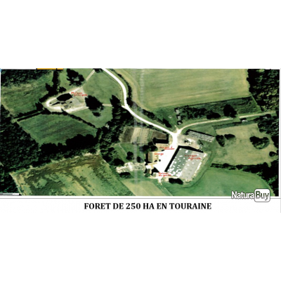 FORET DE 250 HA EN TOURAINE