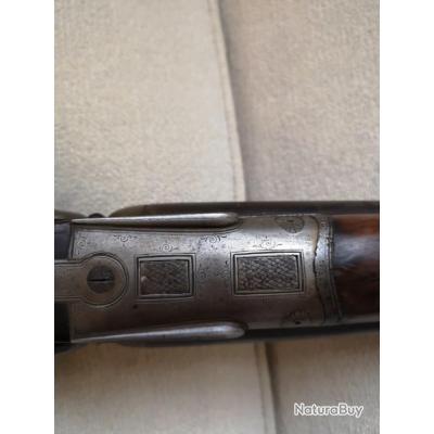 Fusil de chasse collection