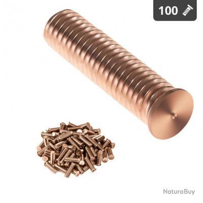 Goujons de soudage - M10 - 40 mm - Acier - 100 pièces