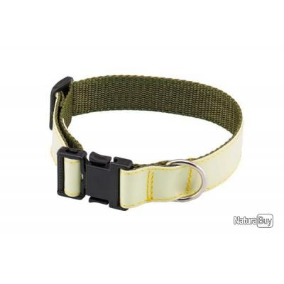 Collier pour chien luminescent 35-40 cm