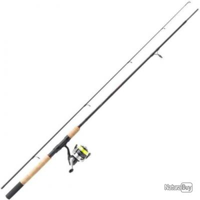 Ensemble Canne Mitchell Tanager R Lure