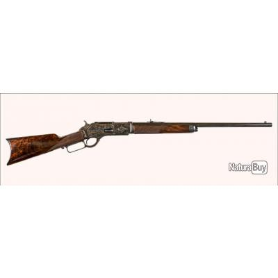 carabine winchester 1876 catégorie d2