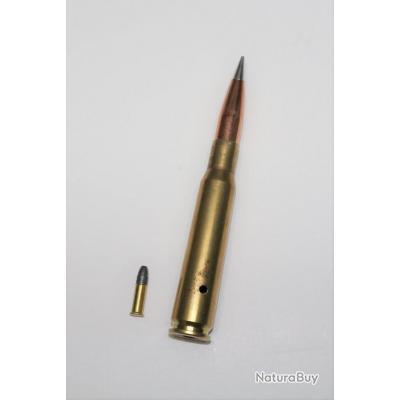 CARTOUCHE 50 BMG (12.7X99) avec OGIVE HORNADY A MAX 750 GR