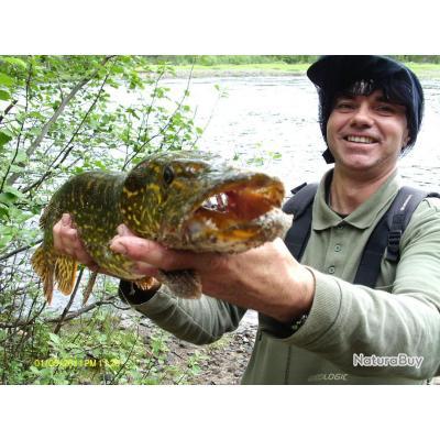 la pêche des carnassiers  en Finlande