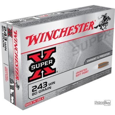 20 MUNITIONS WINCHESTER 243 WIN 80 GRAINS POWER POINT