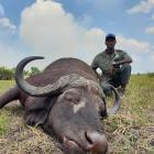 Chassez le Buffle au Mozambique