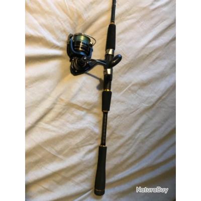Canne à pêche daiwa legalis seabass (10-35gr) longueur (2,4m) + moulinet daiwa regal 3000H