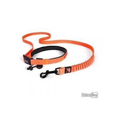 laisse ezydog road runner orange 25 mm X 2.10 m