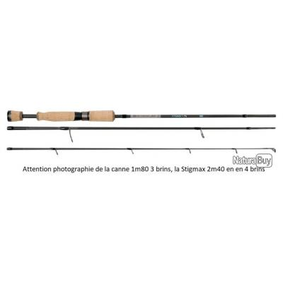 CANNE DELACOSTE STIGMAX PN 2M40