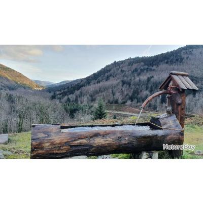 LA chasse du chamois en Alsace  avec un monde de chasse