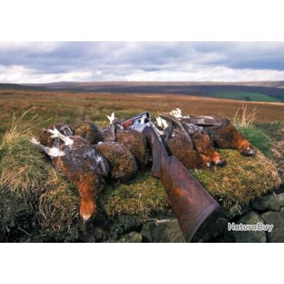 Séjour de Chasse aux Grouses Ecosse Dunkeld Highlands 2020