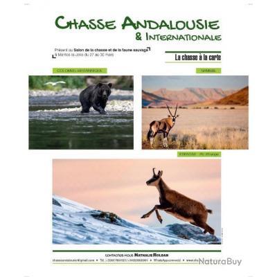 CHASSE EN ESPAGNE & INTERNATIONAL