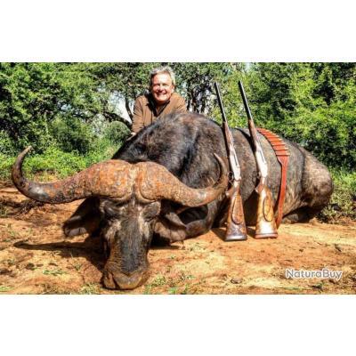 Safari chasse en Afrique du Sud .