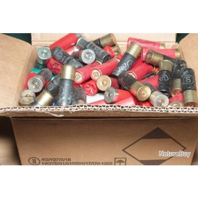 Lot de 200 cartouches calibre 12