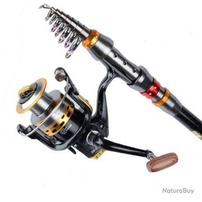 Canne à pêche télescopique 3.60 M Fibre de Verre - Carbone + Moulinet