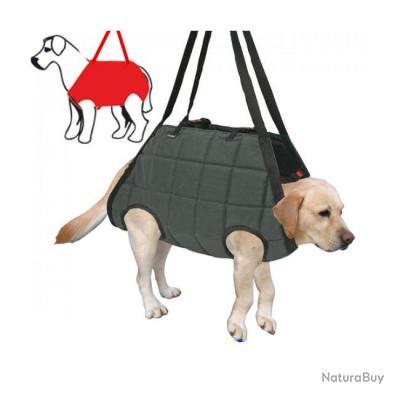 harnais de treuillage pour chien