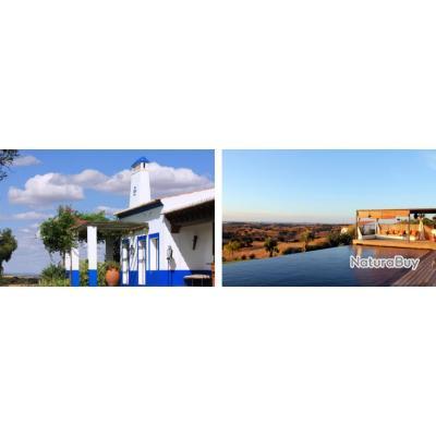 Portugal : Chasse du perdreaux en Battue