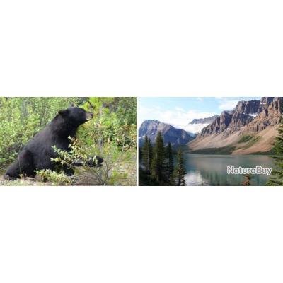 Canada : Grosses Truites des Rocheuses