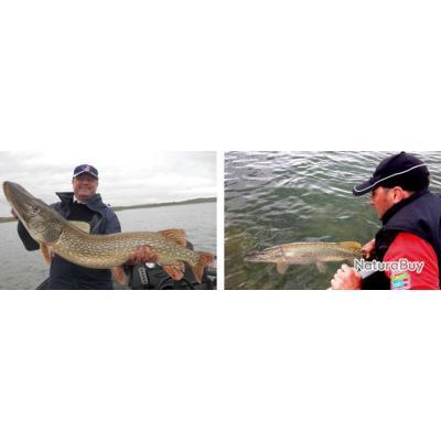 Espagne : Pêche au brochet