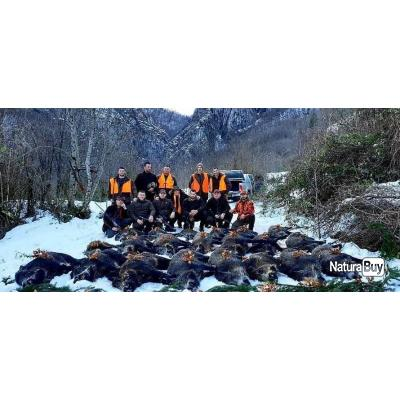 Séjour chasse du sanglier en Bosnie