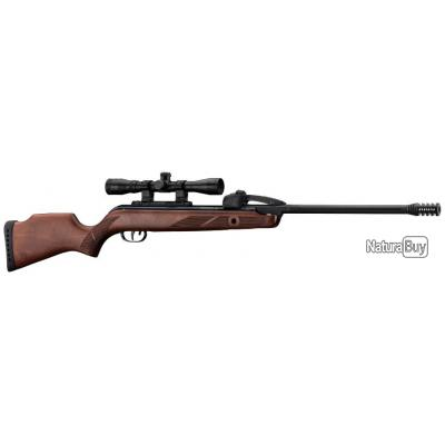 PACK Carabine Gamo Fast Shot 10x IGT - 19,9 j. + lunette 4 x 32 WR + Plombs