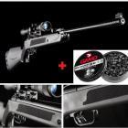 Carabine à plombs Artemis 15 Joules LB600 calibre 5.5 + Lunette 4x20 Umarex+ 250 Plombs Gamo Magnum