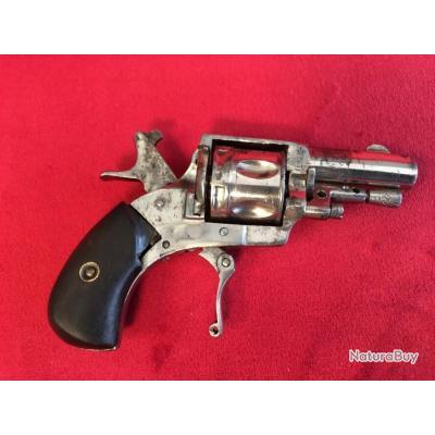 Bulldog Puppy calibre 5.56 mm chromé