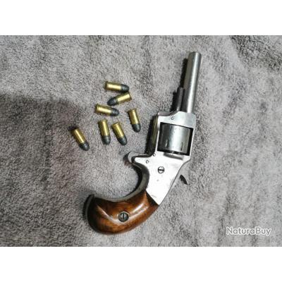 Revolver defender 22 short