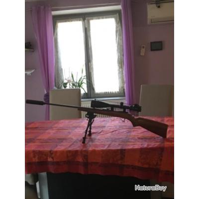 Carabine 22 lr tous équipés