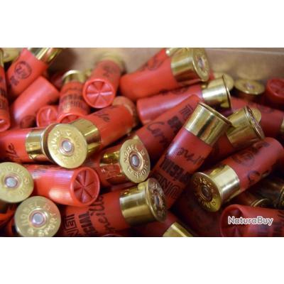 Lot de munitions calibre 12