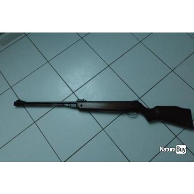 carabine a plomb